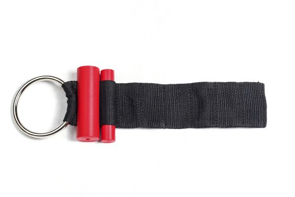 219 Carepoint PDR Door Strap